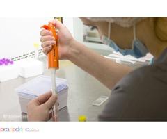 Гестационен заместител и IVF с донорни овоцити.